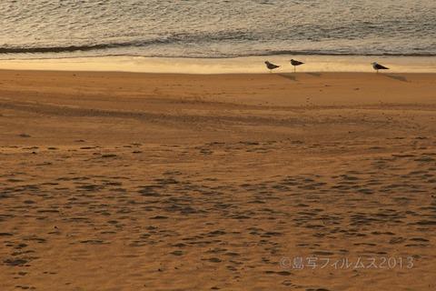 篠島前浜サンサンビーチ_朝日_ 2013-03-21 06-14-17