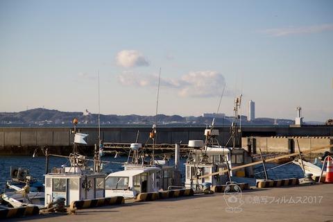 篠島_西山_2017-02-14 16-23-37