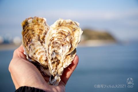 篠島朋輩牡蠣_2021-02-16 16-19-25