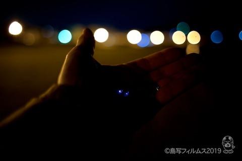 ウミホタル_篠島_前浜_ 2019-03-18 21-09-29
