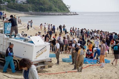 篠島魚のつかみ取り_2015-05-05 08-50-11