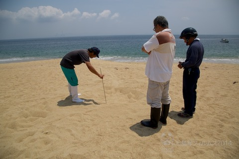 篠島ウミガメビーチランド_06-20 11-57-15