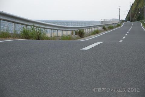 日間賀島_自転車_日間賀島音楽祭_HMK_イルカ_ 2012-05-20 15-43-46