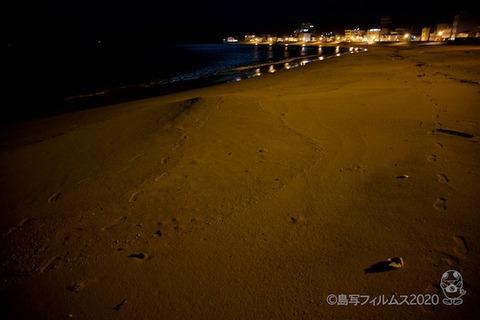 星空を見る会_篠島_2020-10-23 19-36-16