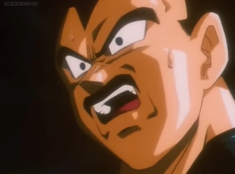 Vegeta_HigeNiawanai_shock1