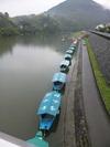 肱川の鵜飼舟