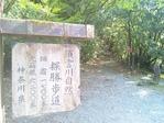箱根の石畳の道