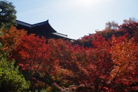 東福寺通天橋