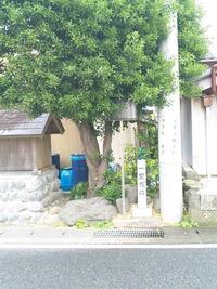 日本一桜えびのまち由比
