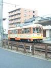 松山市内を走る列車