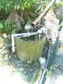 柳水庵の水