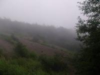 和田峠の頂上近く