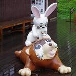 天上山公園のウサギとタヌキ1