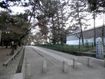 興福寺北参道