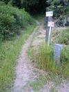 金泉寺への遍路道