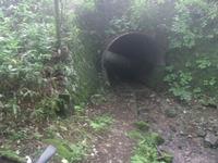 中山道のトンネル