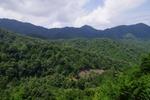 笹子峠からの眺め1