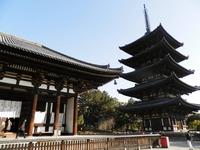 東金堂と五重塔