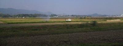佐賀県のとある田舎