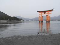 厳島神社の大鳥居1