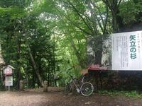 矢立の杉から舗装路へ