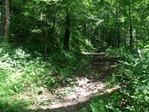 急な登りの峠道