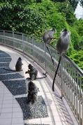 KLタワーの猿