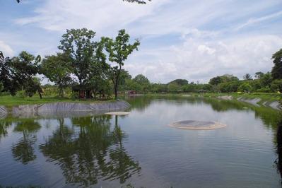 PEOPLE'S PARKの池