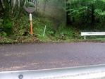 舗装路と交差し続く道