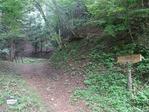 矢立の杉への自然遊歩道