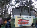 興福寺中金堂再建