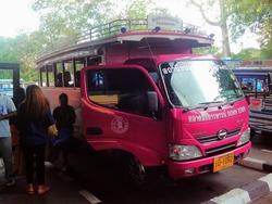 ピンクのトラックバス