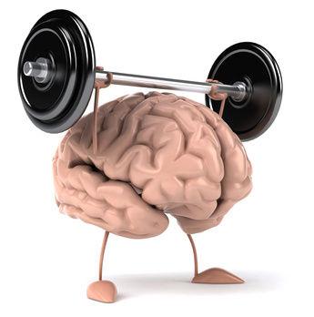 braintraining_XS