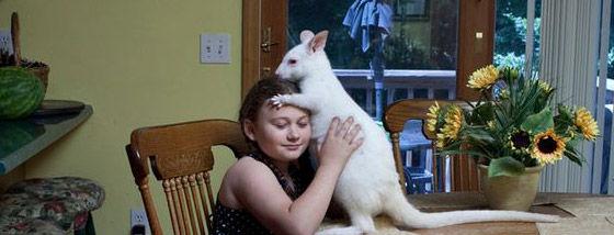 様々な動物達と兄弟の様に育った少女のアーティスティックな写真
