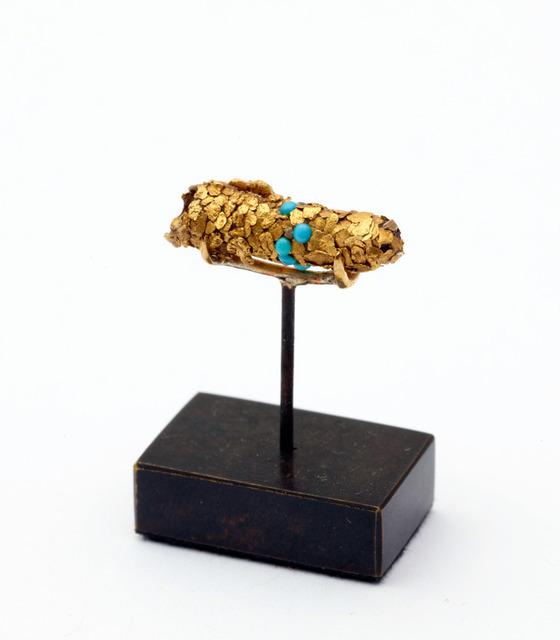 金色に輝くトビケラの幼虫6