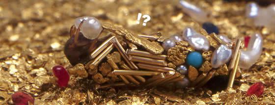 金色に輝くトビケラの幼虫