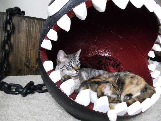 chain-chomp-cat-bed-5