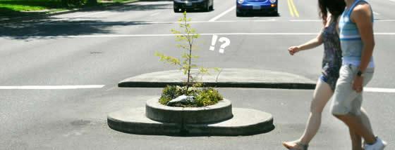世界最小の公園がまるで盆栽のようだ