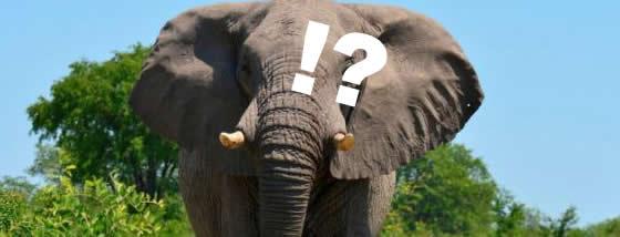 動物園の人気モノ11選はどんな味?
