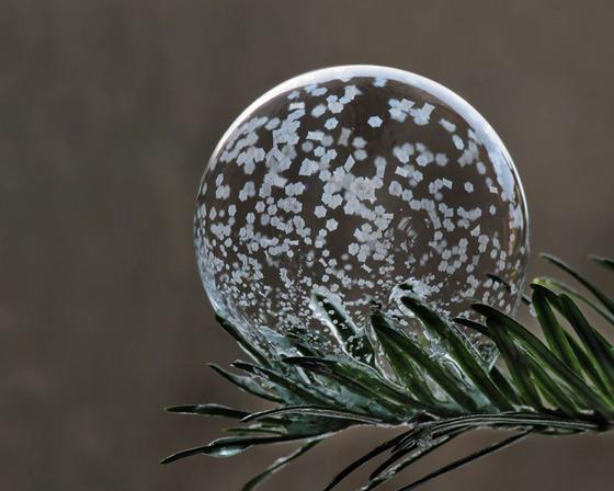 シャボン玉を凍らせるとまるでガラス細工のような美しさ2