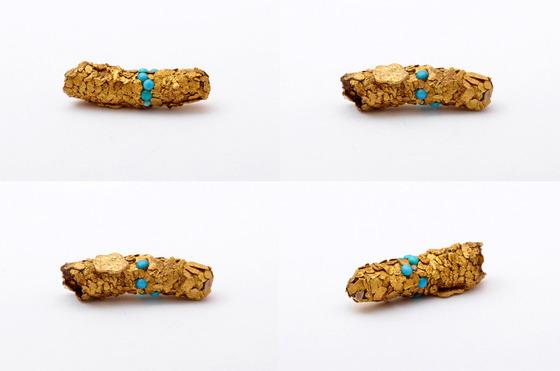 金色に輝くトビケラの幼虫5