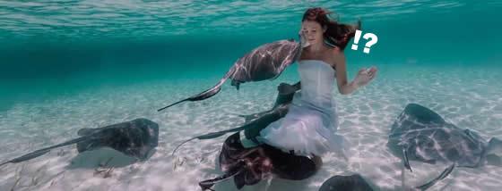 人魚に最も近い女性と呼ばれる美少女とアカエイの水中演舞