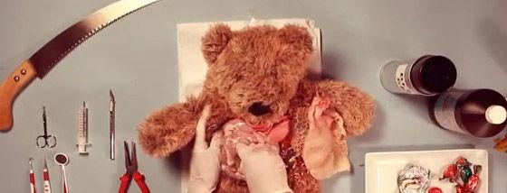 テディベアの手術動画