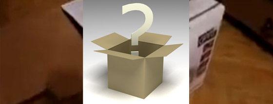 このびっくり箱の中身は何だろね?