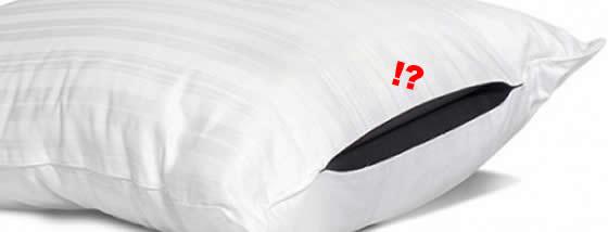 貴重品を隠せる秘密のプライバシーポーチ付き枕1
