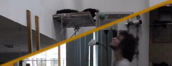 猫と一緒にジャグリング