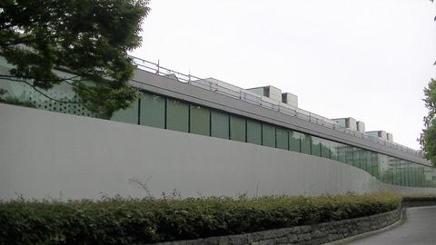 2017 00811 (9)