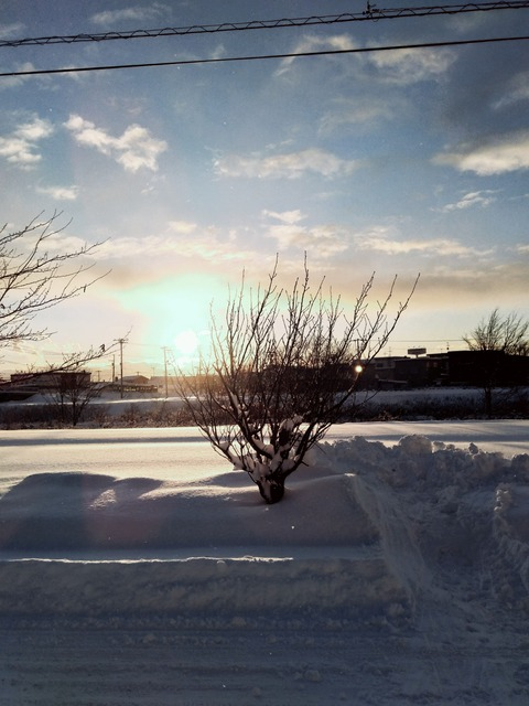 P_20201220_152344_vHDR_On_1