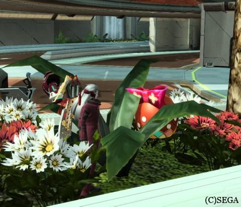 花壇に隠れるイーツター