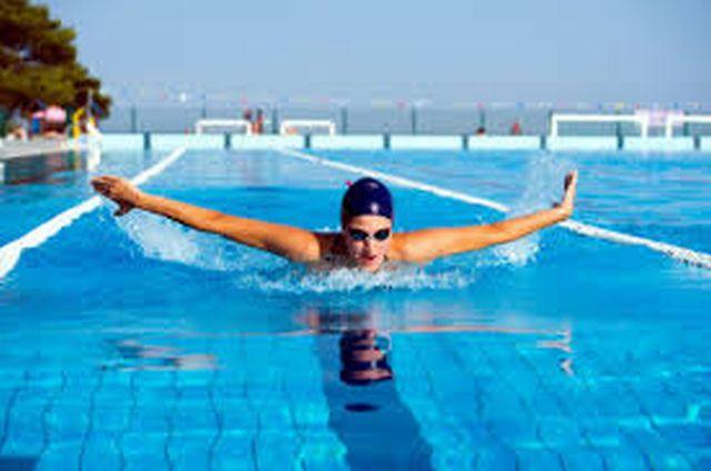 images4K4XIJ4F ロンちゃんはバタフライを泳げるようになりました。(^^♪ノーブレス